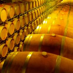 Veinikeldris