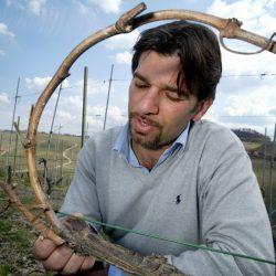Marco Bonfante2